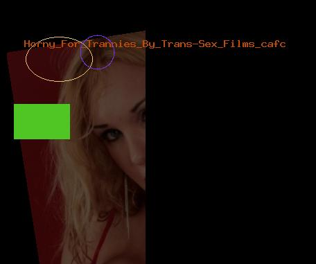 Horny For Trannies By Trans-Sex Films