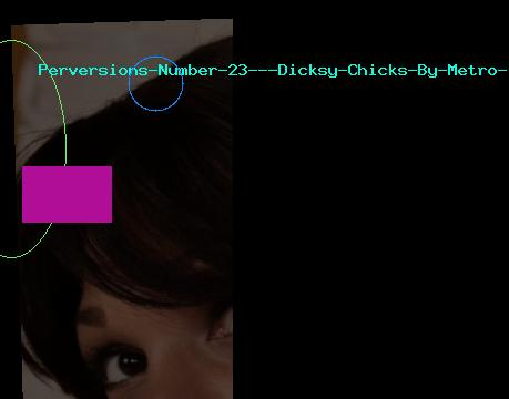 Perversions Number 23 - Dicksy Chicks By Metro Interactive