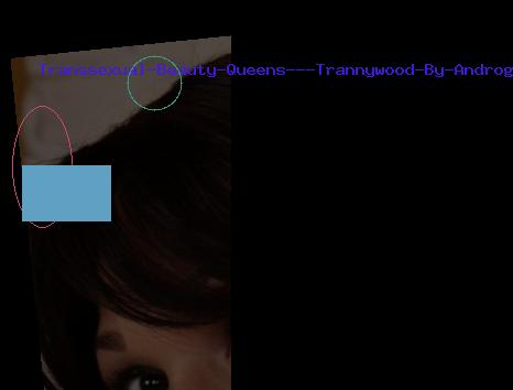 Transsexual Beauty Queens - Trannywood By Androgeny Productions