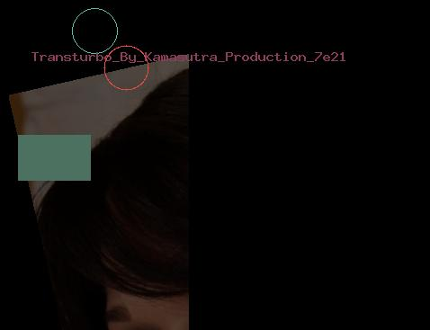 Transturbo By Kamasutra Production